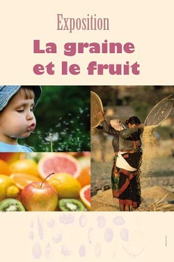 De la graine au fruit